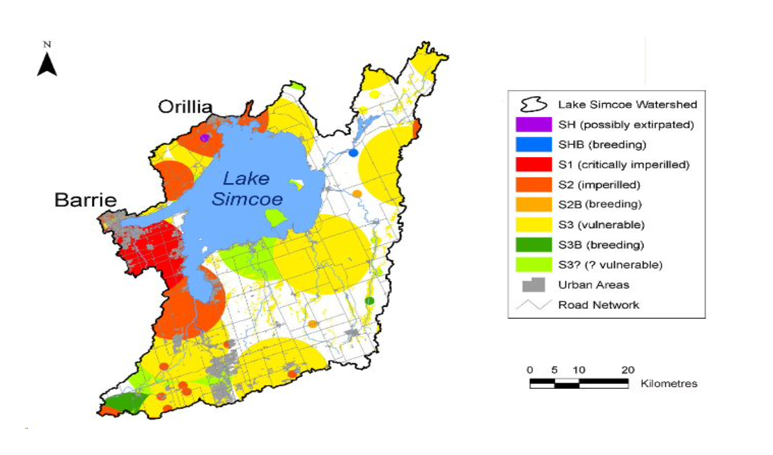 Figure 1: Distribution of provincially rare species (represented as buffered polygons the size of which depend on known location accuracy) arranged by provincial rank (Srank) in the Lake Simcoe watershed.